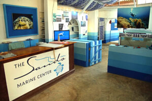 Kenia Diani Beach Marine Center