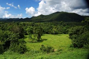 Kui Buri Nationalpark