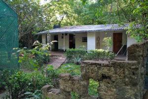 Kenia Diani Beach Colobus Conservation Center