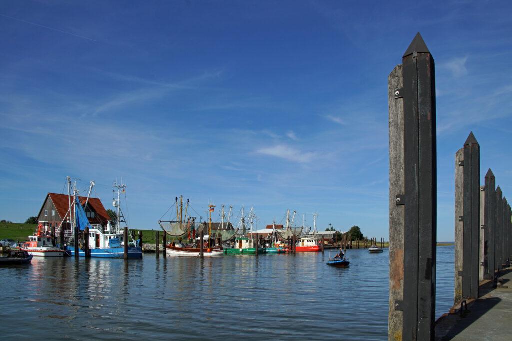 Nordsee Butjadingen Hafen in Fedderwardersiel: Krabbenkutter