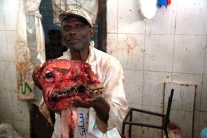 Kenia Mombasa Fleischmarkt Mann Verkäufer Kamel Kamelkopf
