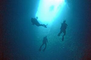 Palau Blue Holes Tauchen Großfisch Haie