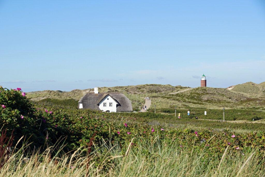 Nordsee Sylt Leuchtturm